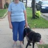 Meet One Of Edgewater's Finest, Guide Dog Cameo