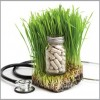 Alternative Medicine Making a Big Impact In Edgewater and Andersonville