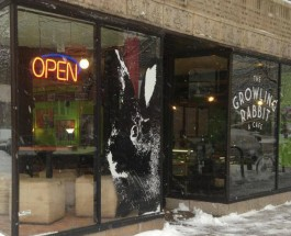 Popular Rogers Park Restaurant 'The Growling Rabbit' Makes Move To Bigger Edgewater Space